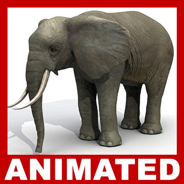 max elephant rigged polys animation