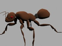 3d model ant splines