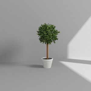 3d model topiary plant