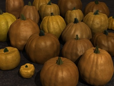 max pumpkins variety spot