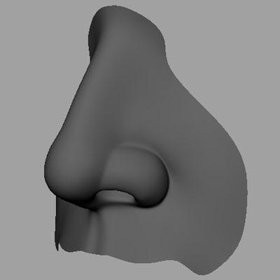 3d nose