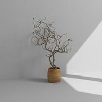 3ds max tree accessory