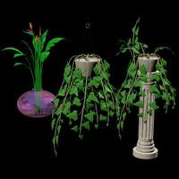 3 plants pzplants pz3