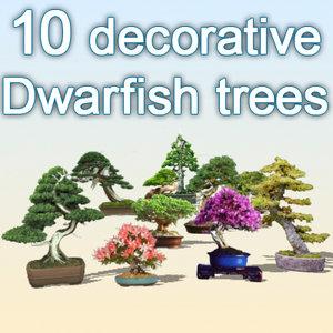 max dwarfish trees plant