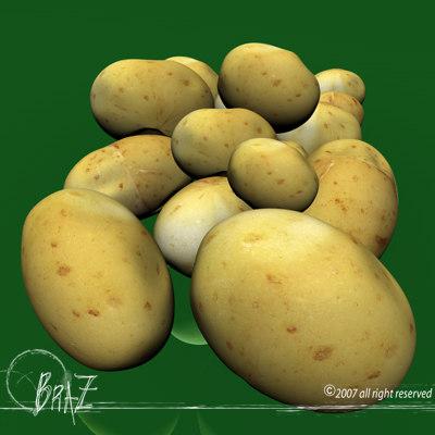 potato food 3d model