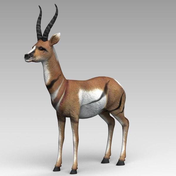 antelope 3d model