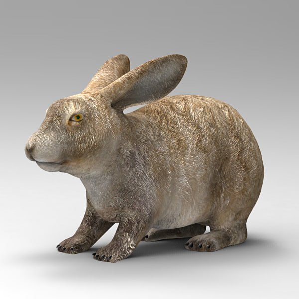 3ds max hare