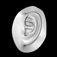 human ear dxf