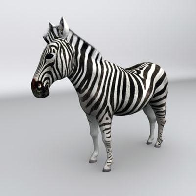 3d zebra animal model