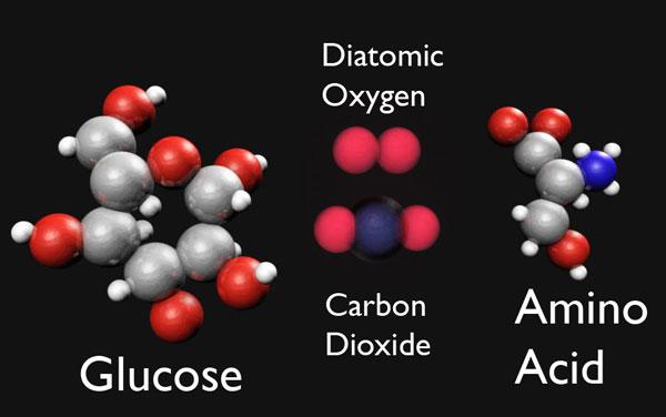 3d model of molecules glucose oxygen
