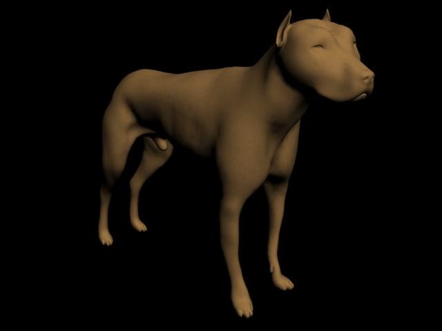 3d pitbull ready animation model