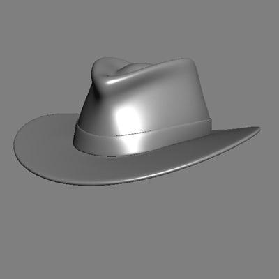 3ds hat