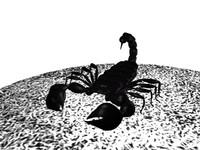 3d scorpion