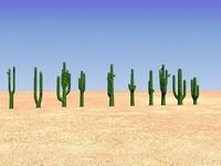 3d 10 cactus plants cactuses model
