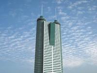 3d model shun hing square skyscrapers