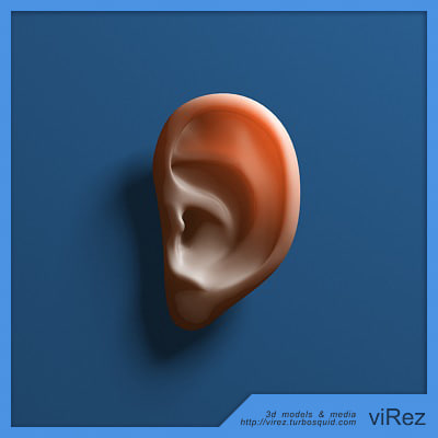 3d human ear model