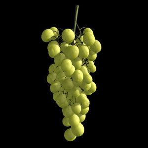 maya grape