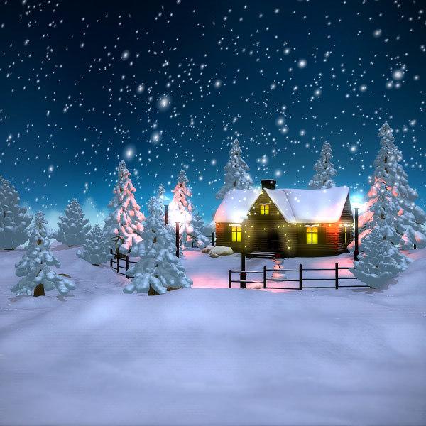 Christmas Scene.Winter Scene