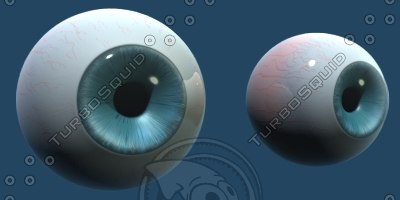 eyes morphs modeled 3d model