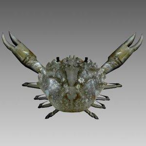 crab screensavers 3d model