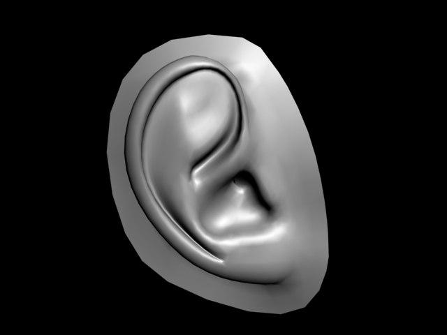 3d model of human ear