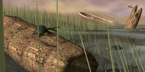 swamp scene turttles 3d model