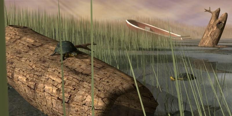 swamp scene turttles 3d model