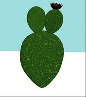 3ds cactus