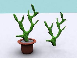3d model of opuntia cactus