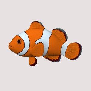 anemonefish clown 3d model