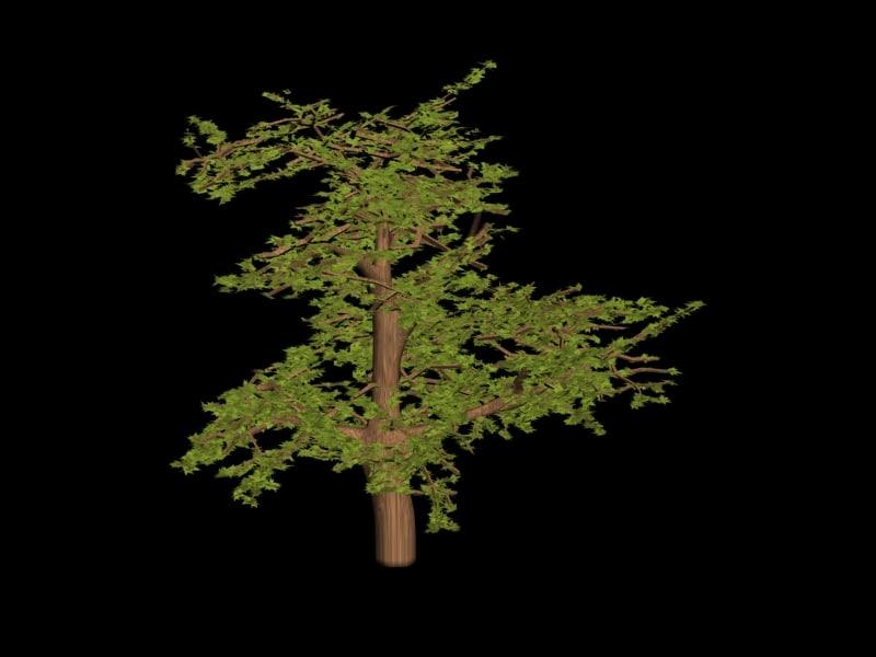 tree seeds 3d max