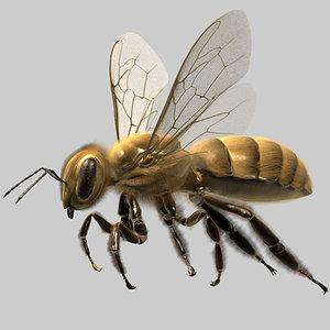 3ds max honey bee