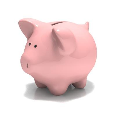 maya piggy bank
