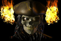 pirateSkull.rar