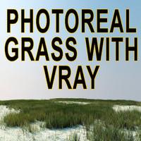 max grass garden scene