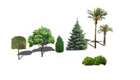 trees bush palm 3d 3ds