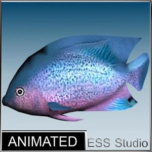 3d model tropical fish