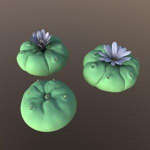 cactus plant 3d model