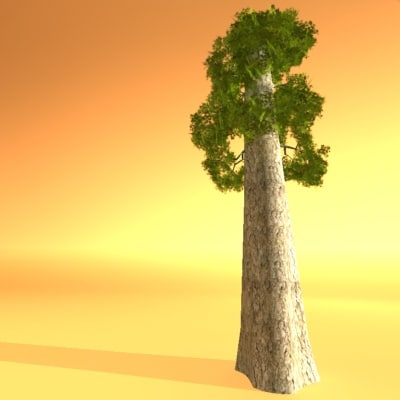 3ds max light wood redwood