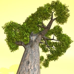 3d north redwood wood