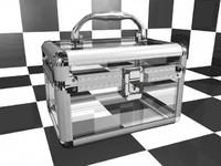 3d transparent beauty box