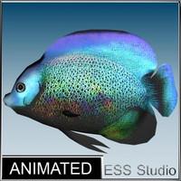 3d tropical fish 4 model