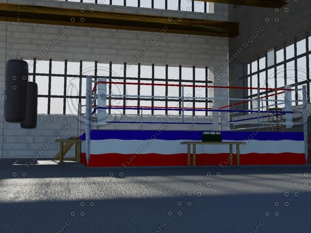 3ds boxing gym