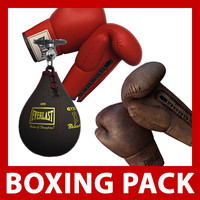 New and Old Boxing Gloves and Speed Bag