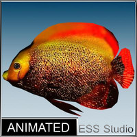 tropical fish 3d max