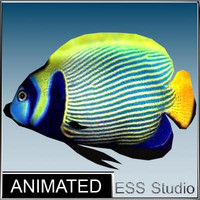 tropical fish 3d fbx