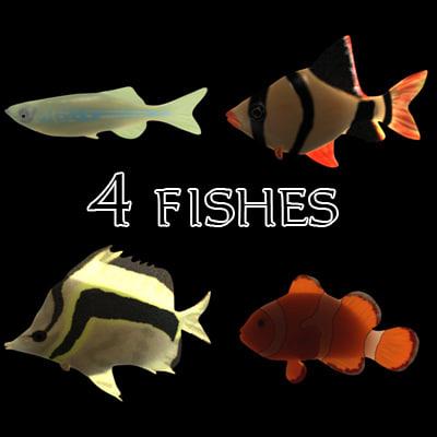 3d fishes aquarium
