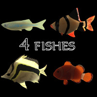 3d fishes aquarium