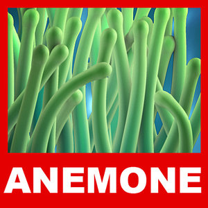3ds max sea anemone tenticles