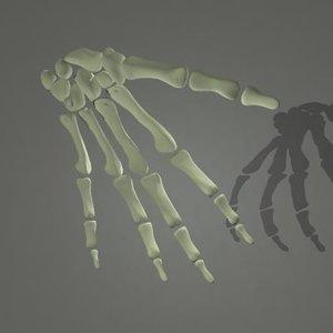maya human skeleton hand bones